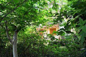 Gartenansicht Im langen Loh 251