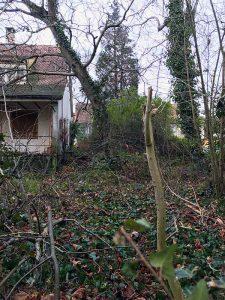 Garten, Liegenschaft «Im langen Loh 251» Januar 2017