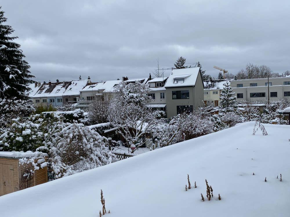 Im langen Loh, Januar 2021, Schnee
